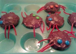 2009-10-29 spider cupcakes-edited