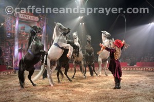 Horses rear for trainer Jenny Vidbel at the Big Apple Circus.
