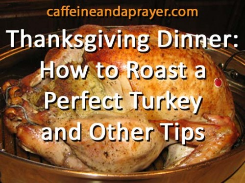 photo of turkey with words superimposed: Thanksgiving Dinner: How to Roast a Perfect Turkey and Other Tips